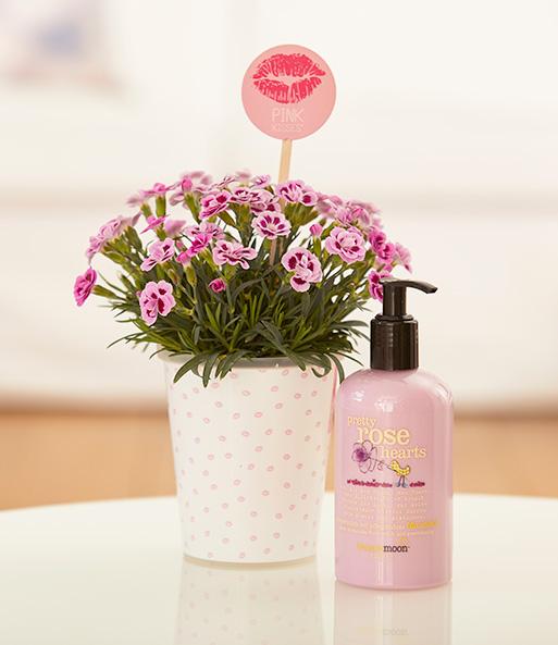 Mit dem Friendset Friendset Sommerduft mit einer Pink Kisses® Mininelke und blumig duftender Körpermilch von treaclemoon™ machst Du deiner BFF ein tolles Freundschaftsgeschenk und zeigst Ihr, wie wichtig sie dir ist. denn: Küsse unter Freundinnen sind pink!