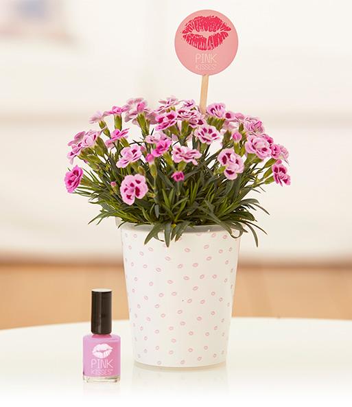 Mit dem Friendset Think Pink! mit einer Pink Kisses® Mininelke mit exklusivem Nagellack zeigst Du deiner besten Freundin, wie wichtig sie Dir ist und machst Ihr ein wunderbares Freundschaftsgeschenk