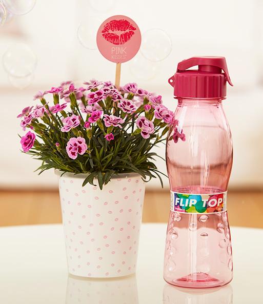 """In dem Geschenk-Set """"Care-Paket"""" ist eine Pink Kisses® im Kunststoff-Übertopf inklusive Friendstick und stylischer Trinkflasche enthaltenen Freundin, wie wichtig sie dir ist!"""
