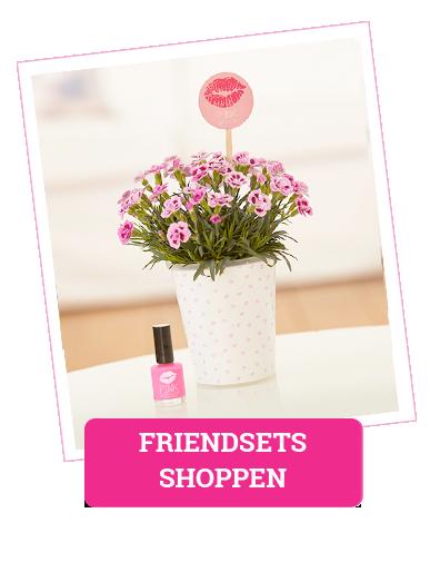 Friendsets shoppen: Link zur Übersicht aller Angebote