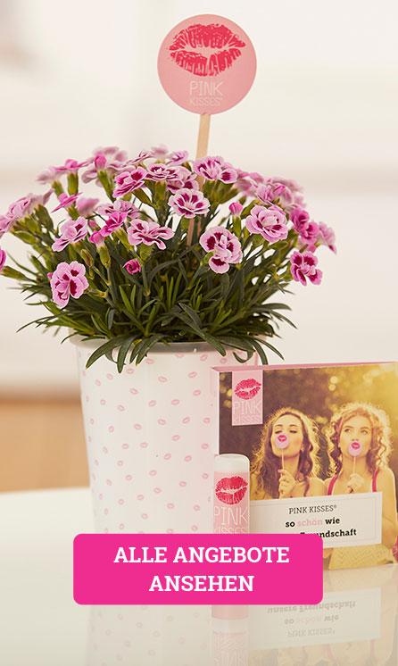 Über diesen Link gelangst du zur Übersicht aller Pink Kisses Geschenk-Arrangements