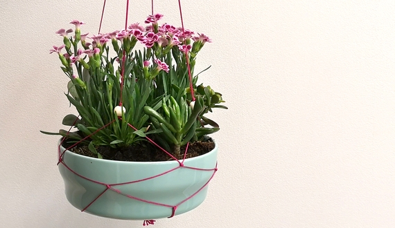 DIY-Makramee-Blumenampel mit Pink Kisses Mininelken