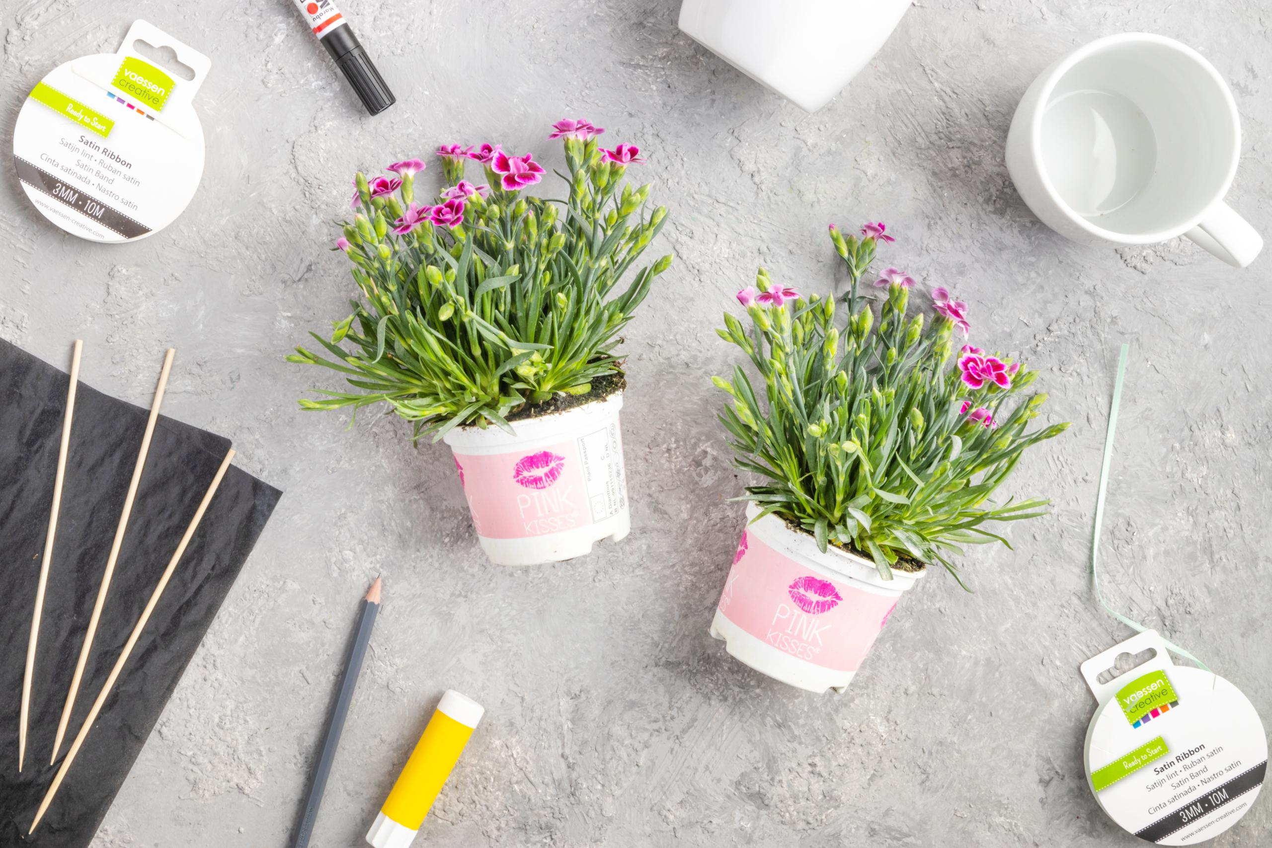 Material für das DIY-Blumengeschenk in der Tasse von Pink Kisses